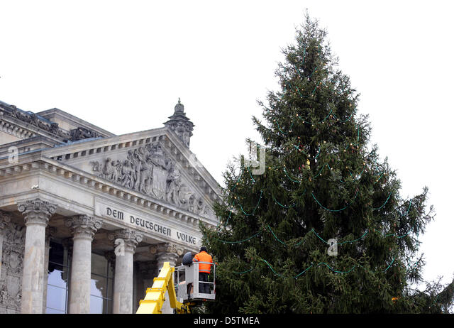 Chains of lights are being put on a Christmas tree in front of the Reichstag in rain and temperatures of 7 degrees - Stock Image