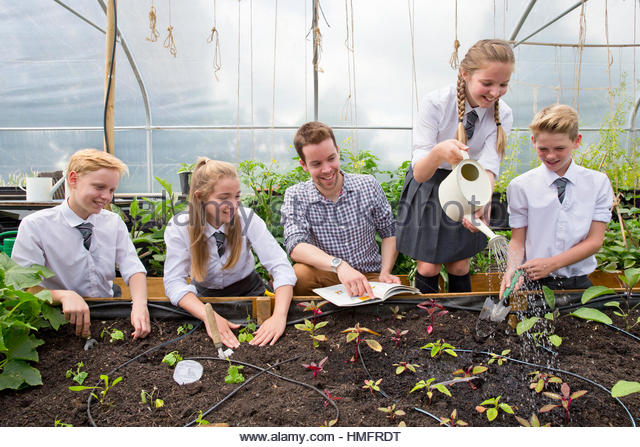Teacher and middle school students with watering can watering plant seedlings in greenhouse - Stock-Bilder