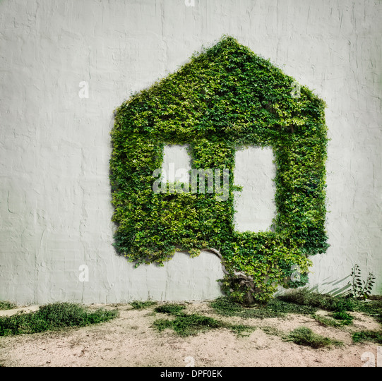 Ivy growing in shape of house - Stock-Bilder
