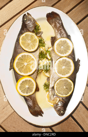 overhead grilled trout with lemon slices - Stock Image