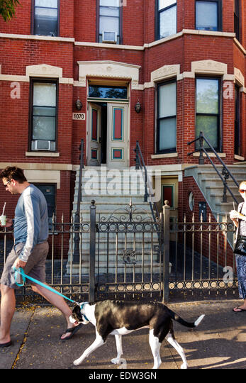 Illinois Chicago Little Italy West Taylor Street man dog leash pet townhouse residences steps - Stock Image