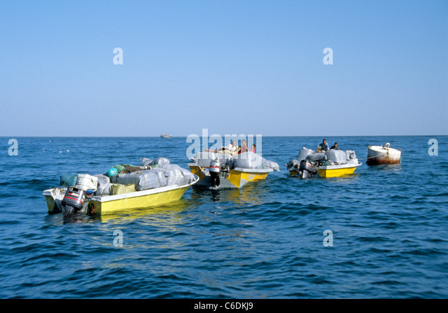 Iranische Schmuggler auf dem Weg in den Iran, Khasab, Smuggler from Iran on the way back, Khasab - Stock-Bilder