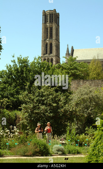 Limoges cathedral stock photos limoges cathedral stock images alamy - Jardin mediterraneen limoges ...