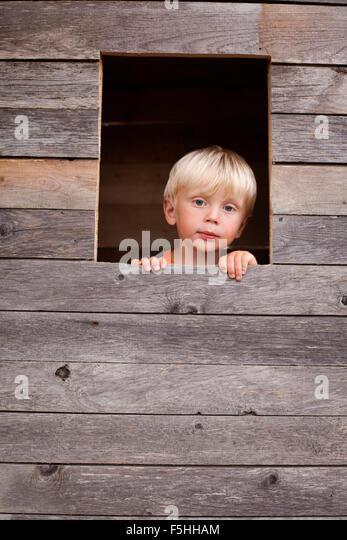 Sweden, Gotland, Faro, Boy (2-3) looking through tree house window - Stock Image