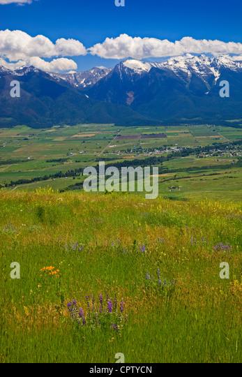 National Bison Range Wildlife Refuge Rolling prairie hillsides with summer flowers under cumulus clouds - Stock-Bilder