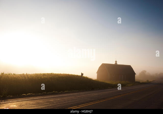 Sunrise through morning mist over barn and cornfield next to a road - Stock-Bilder