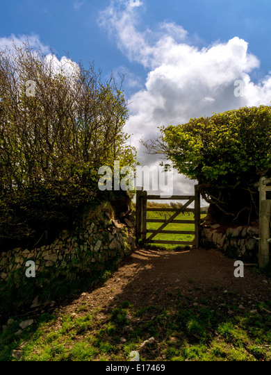 Gate on a country footpath, Exmoor, England, UK - Stock Image