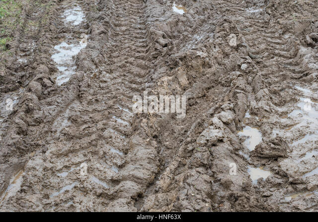 Thick muddy tractor tyre tracks at field entrance. - Stock Image