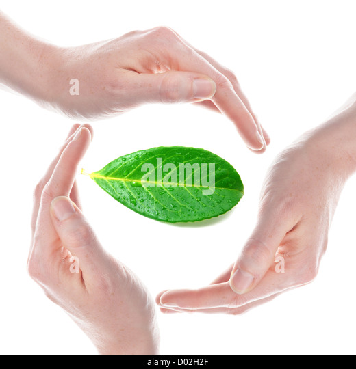 eco ecology or environmental protection copncept with leaf and hand - Stock Image