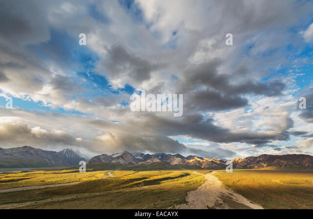 Braided river flowing out of the Alaska range, Polychrome mountain, Denali National Park; Alaska, United States - Stock Image