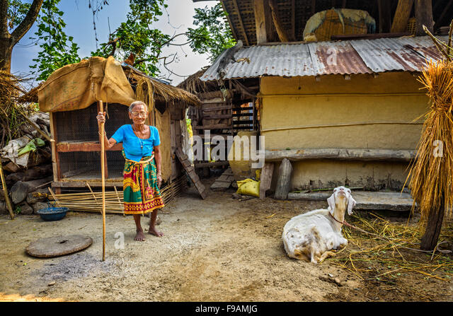 Very Old Nepalese Woman And Her Goat In The Backyard Of Her House   Stock  Image