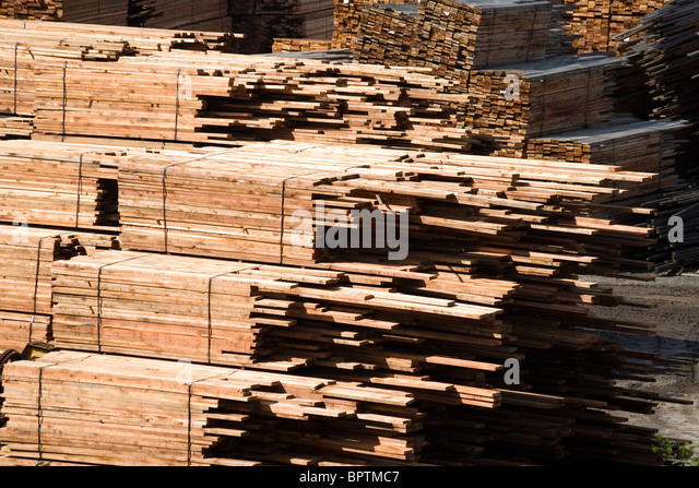 Timber Stack for background use - Stock Image