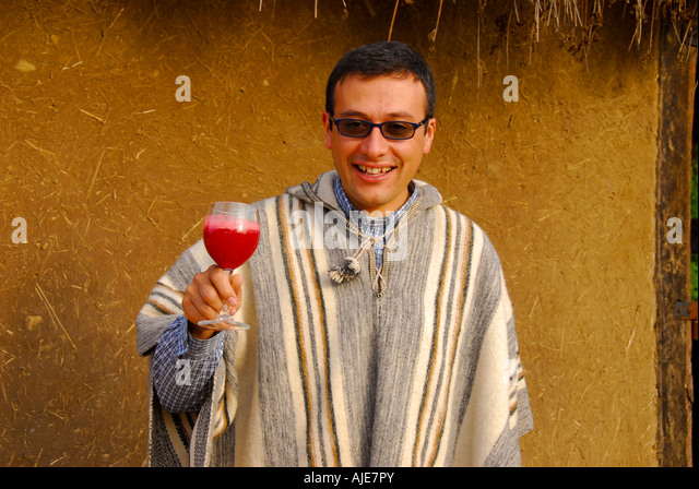 Chile man offering glass of wine, welcoming drink, vina santa cruz winery, tourist attraction, - Stock Image