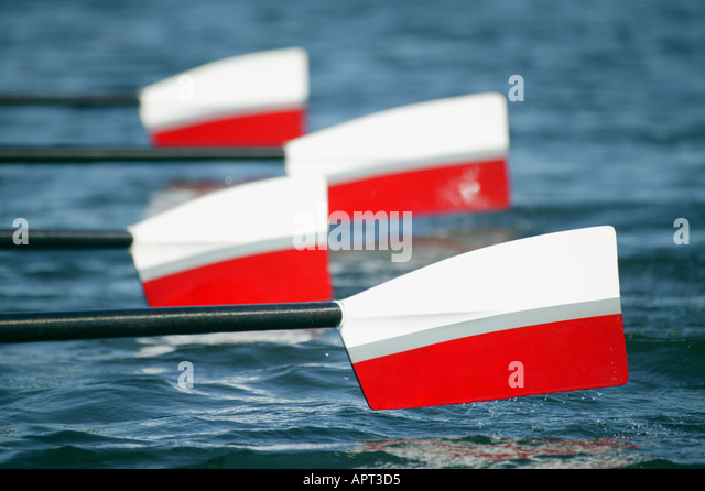 Red and white rowing boat blades in action - Stock Image