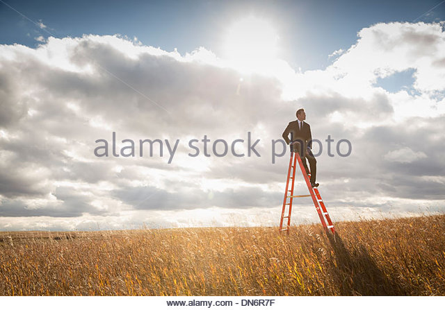 Businessman sitting on top of step ladder in field - Stock Image