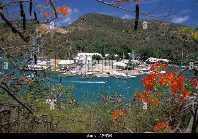 Antigua Nelsons Dockyard National Park English Harbour through red Poinciana Trees landmark Antigua tourist attraction - Stock Image