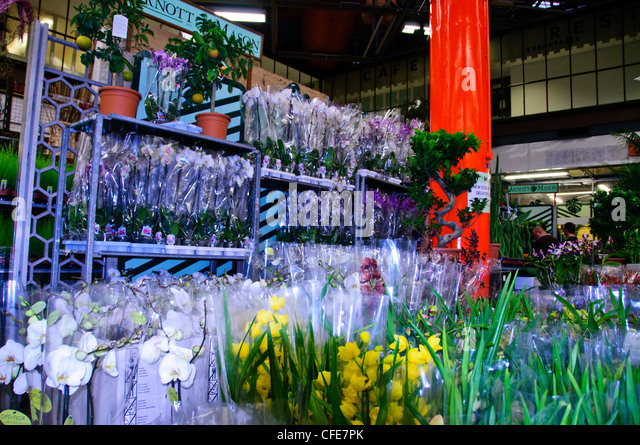 New Covent Garden Market,Wholesale Market, Displays of Fruit,Flowers,Vegetables, Interior Dry Flower Decorations,SW - Stock Image