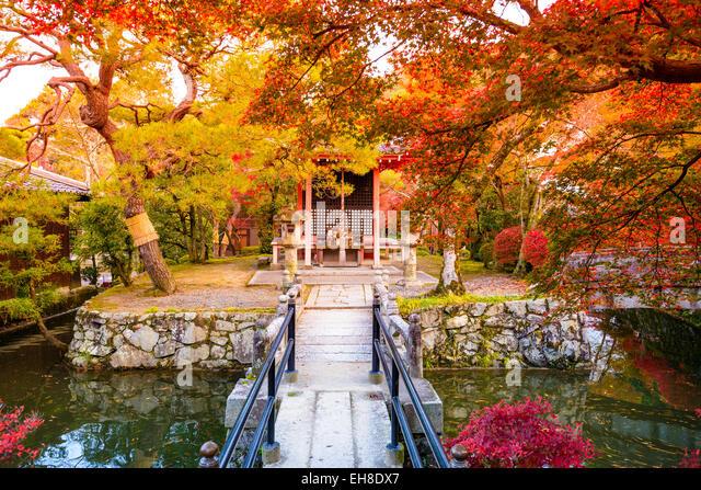 Fall foliage in Kyoto, Japan. - Stock Image
