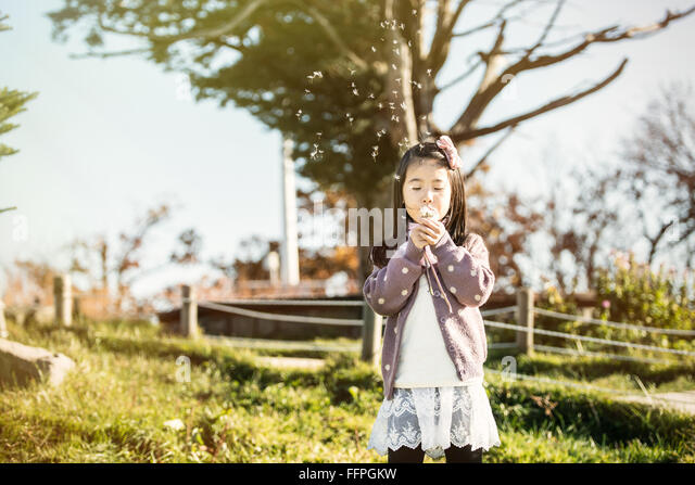 Asia, the child blowing a dandelion in a park. - Stock Image