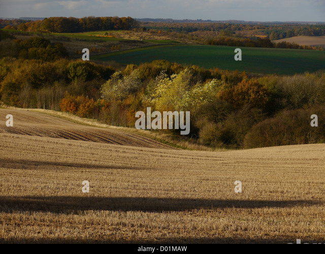 Trees shadows and fields in a rural Nottinghamshire English landscape in autumn (the fall) - Stock Image