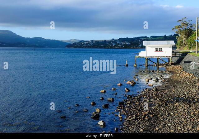 Little fishing cottage on a rocky beach, Otago Peninsula, Otago, South Island, New Zealand, Pacific - Stock Image