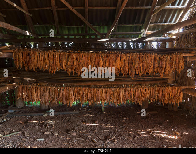 Tobacco Barn Stock Photos Amp Tobacco Barn Stock Images Alamy