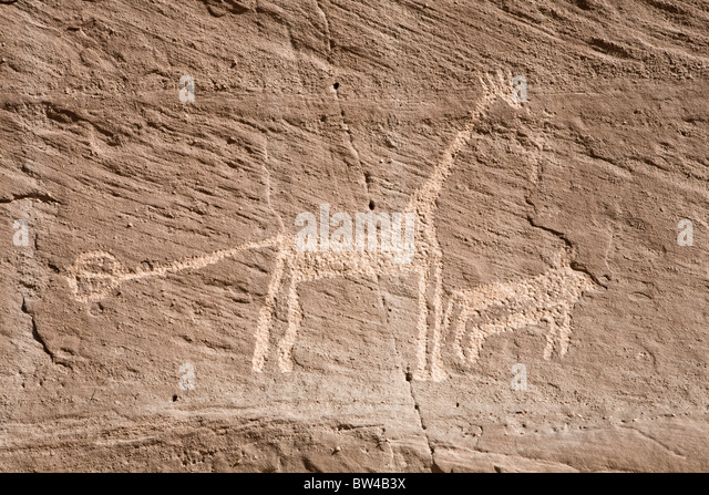 Giraffe and smaller animal etched on rock in the Eastern Desert of Egypt - Stock Image