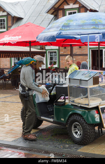 PALANGA, LITHUANIA - AUGUST 08,2015: Basanavicius street is the central tourist street of Palanga. - Stock-Bilder