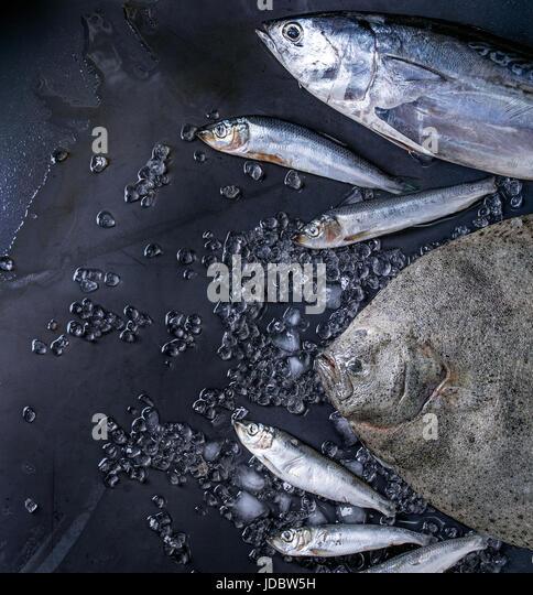 Raw fresh tuna, herring and flounder fish - Stock Image