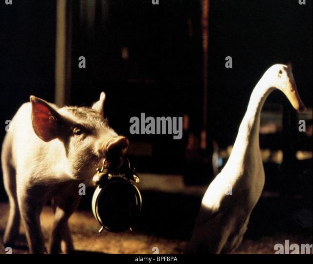 BABE & FERDINAND BABE (1995) - Stock Image