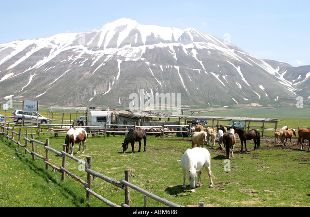 Horse riding is a popular sport for visitors to the Piano Grande of the Sibillini National Park Le Marche Italy - Stock Image