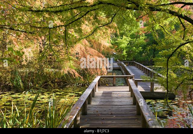 Van dusen botanical gardens vancouver - Stock Image
