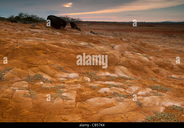 Desert landscape in Sarigua national park, Herrera province, Republic of Panama. - Stock Image
