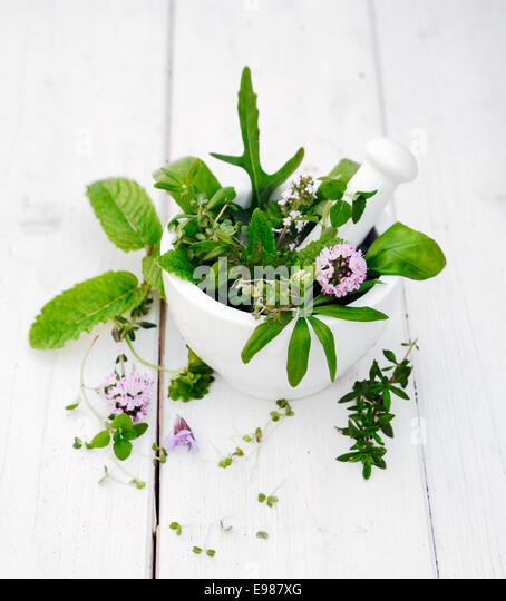 Flowering Assorted Herbs in a Mortar with pestle on white wooden background - Stock Image