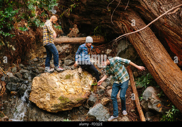 Three friends hike through a redwood forest in Big Sur, California. - Stock Image