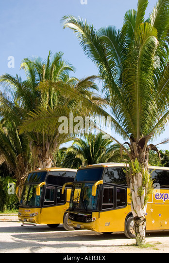 Costa Maya Chacchoben archaeological site modern tour bus mexico - Stock Image