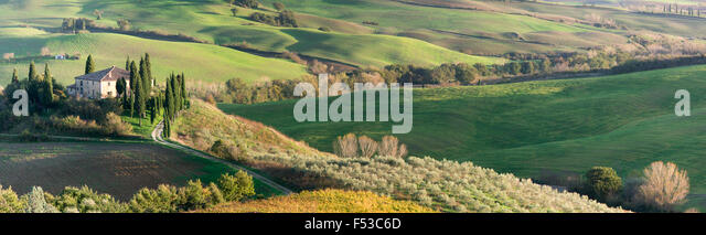Europe, Italy, Tuscany, San Quirico d'Orcia.  A panoramic view of Il Belvedere House, a country house in San - Stock-Bilder