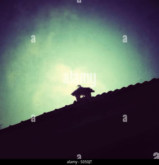 chimney silhouette - Stock Image