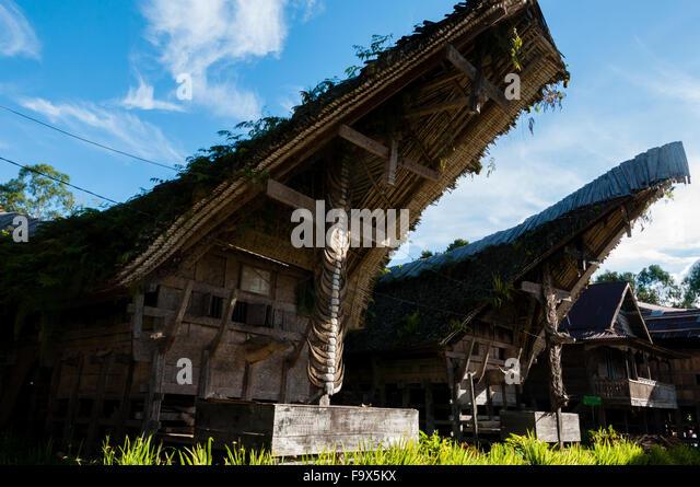Sulawesian Stock Photos & Sulawesian Stock Images - Alamy Horns Inda House