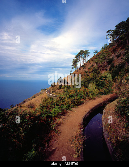 Levada Madeira Portugal Europe. Photo by Willy Matheisl - Stock Image