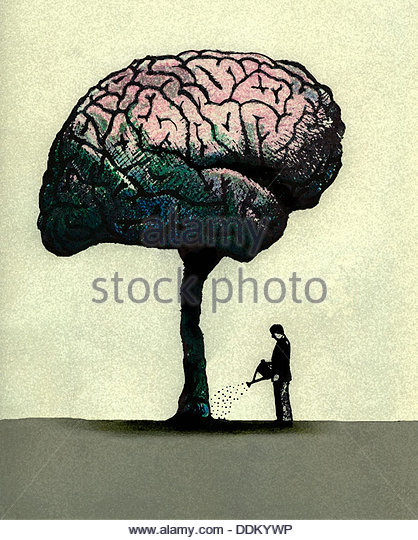 Man watering brain tree - Stock Image