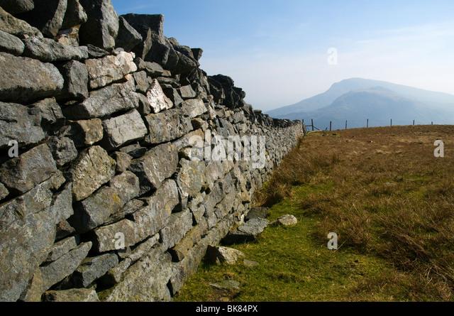Moel Hebog from Mynydd Tal-y-mignedd, Nantlle Ridge, Snowdonia, North Wales, UK - Stock Image