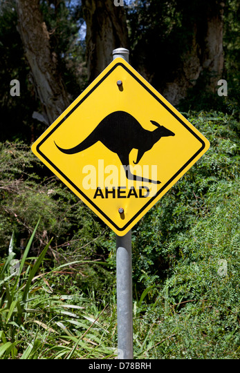 Kangaroo warning sign on the road in Australia - Stock Image
