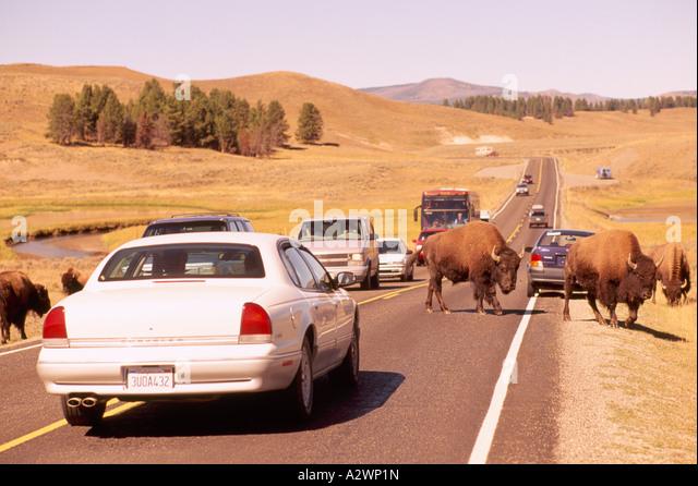 Car Shows Near Wyoming