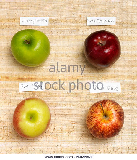 Four Assorted Apples with Labels - Stock Image