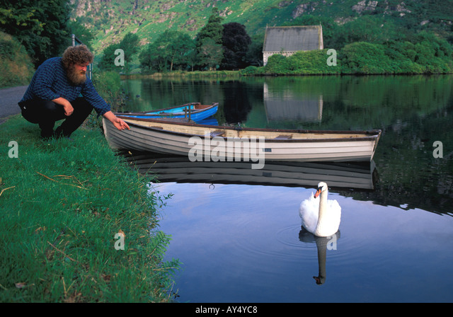 Ireland man feeding swan fishing boats lake calm placid rural mountainside forest trees - Stock Image