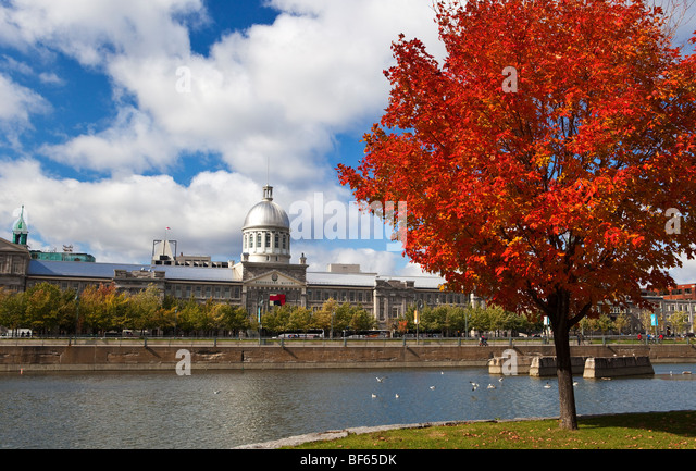 Fall in Bonsecours Bassin Park in Montreal, Canada - Stock Image