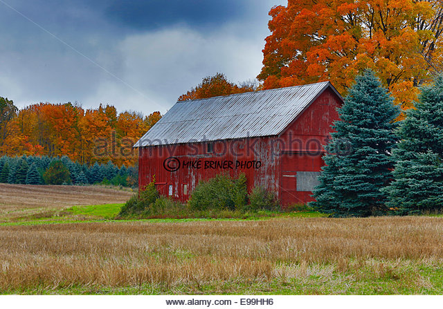 Barn in autumn in Ludington, Michigan; HDR image - Stock Image