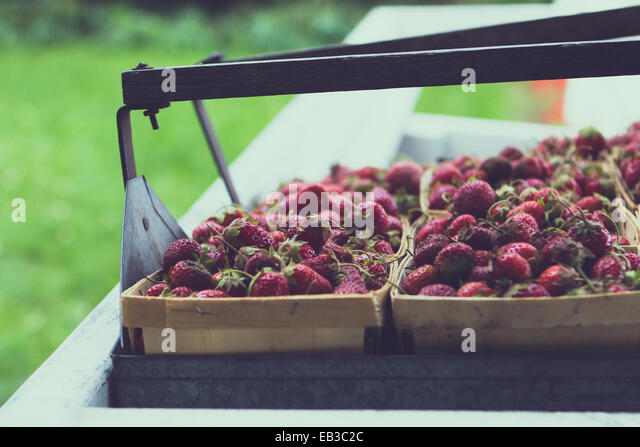 Strawberries at farmers market - Stock Image