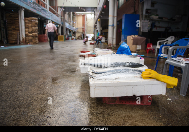 Korea ice stock photos korea ice stock images alamy for Local fish market